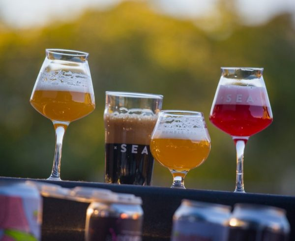 Humble Sea Brewing Company beer lineup