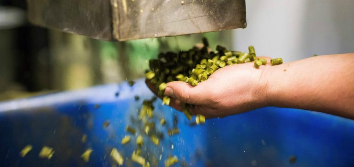 Pellet hops used in hop blends falling through hands