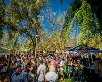 Spring Brews Festival