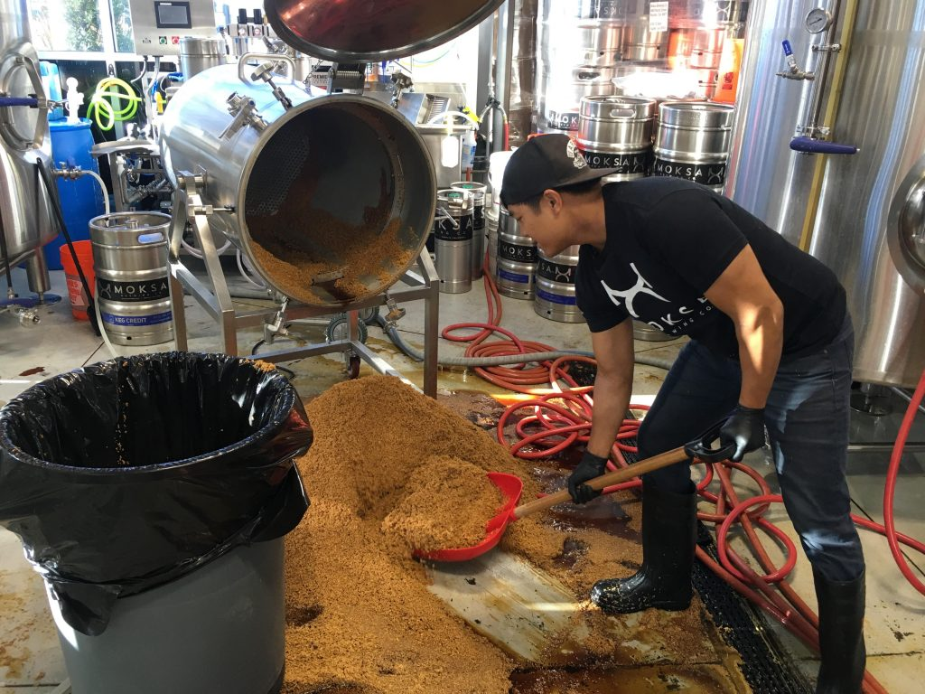 Moksa Head Brewer Derek Gallanosa shoveling grain.