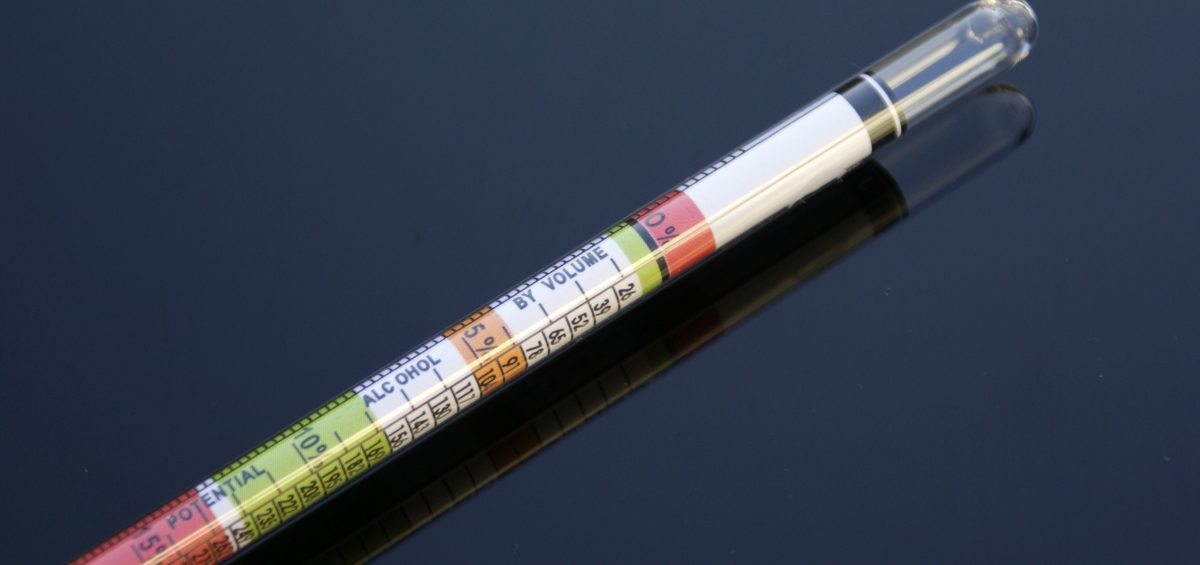 Brewing hydrometer