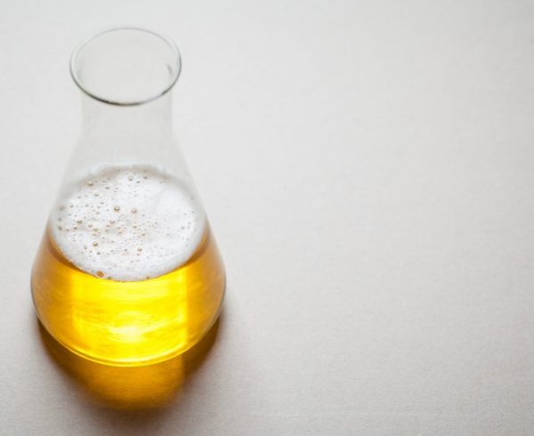 Light beer in a chemical flask on a smooth gray table