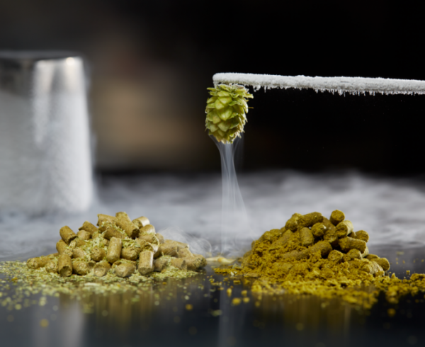 Dry hopping and cry hops