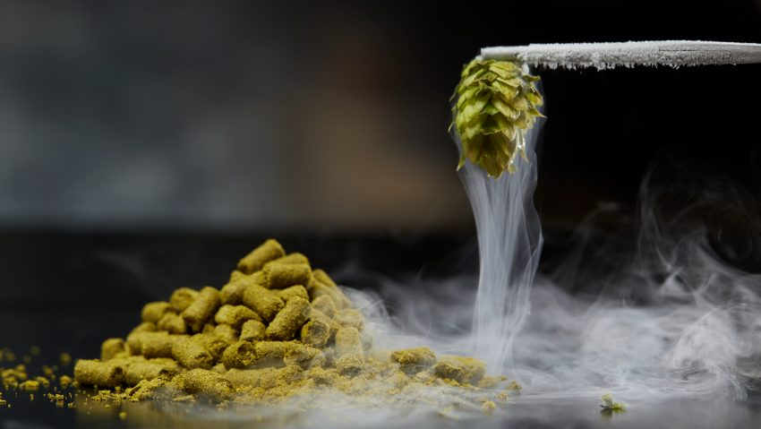 YCH Hops® hop extract