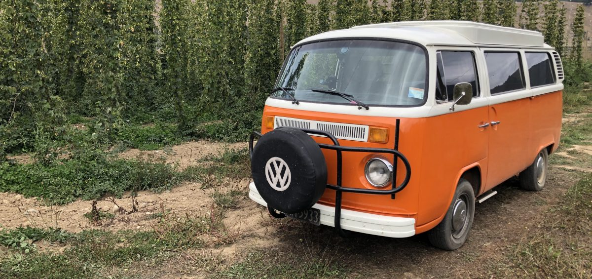 Kombi at Hop Revolution Farm in New Zealand